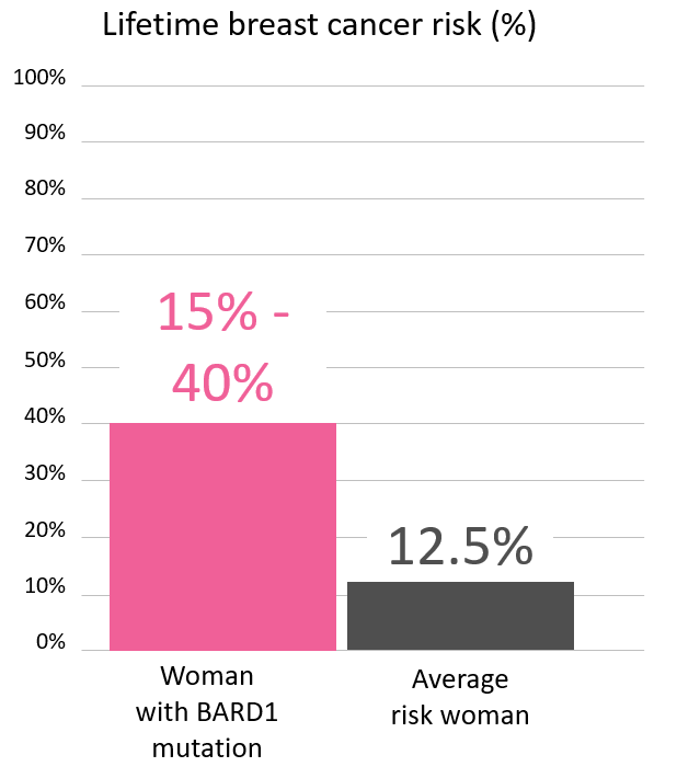 Graph of lifetime risk for breast cancer in a woman with a <abbr                 data-toggle='tooltip'                 class='glossary-tip tt-bard1'                 title='<p>BARD1 is a gene found on chromosome 2.&nbsp;Mutations in BARD1&nbsp;increase the risk for&nbsp;female breast cancer&nbsp;and possibly other cancers.&nbsp;</p> '             >BARD1</abbr> mutation
