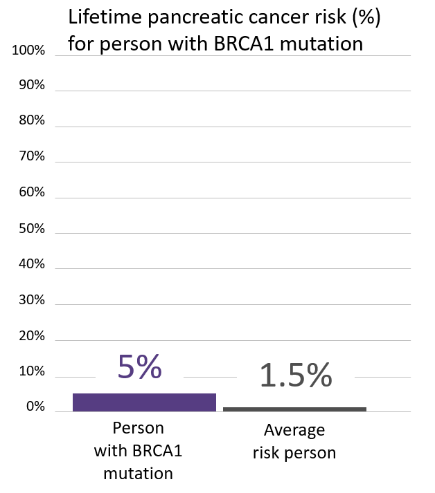Graph of lifetime risk for pancreatic cancer in people with a <abbr                 data-toggle='tooltip'                 class='glossary-tip tt-brca1'                 title='<p>BRCA1 is a gene found on chromosome 17. Mutations in BRCA1 increase the risk for cancers including breast, ovarian, pancreatic, prostate,&nbsp;melanoma and possibly other cancers. BRCA1&nbsp;mutations are among the genes associated with Hereditary Breast and Ovarian Cancer Syndrome, also known as HBOC.&nbsp;</p> '             >BRCA1</abbr> mutation