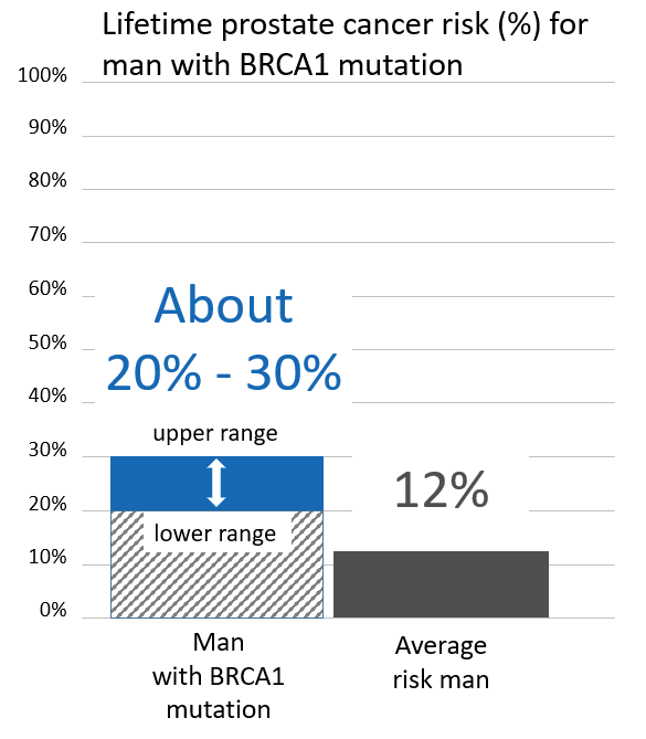 Graph of lifetime risk for prostate cancer in men with a <abbr                 data-toggle='tooltip'                 class='glossary-tip tt-brca1'                 title='<p>BRCA1 is a gene found on chromosome 17. Mutations in BRCA1 increase the risk for cancers including breast, ovarian, pancreatic, prostate,&nbsp;melanoma and possibly other cancers. BRCA1&nbsp;mutations are among the genes associated with Hereditary Breast and Ovarian Cancer Syndrome, also known as HBOC.&nbsp;</p> '             >BRCA1</abbr> mutation
