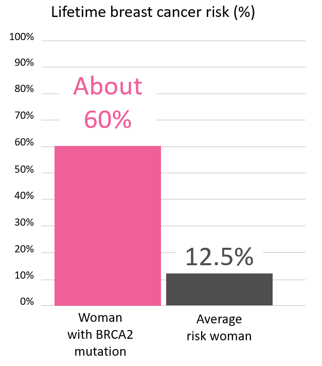 Graph of lifetime risk of breast cancer in women with a <abbr                 data-toggle='tooltip'                 class='glossary-tip tt-brca2'                 title='<p>BRCA2&nbsp;is a gene found on chromosome 13. Mutations in BRCA2&nbsp;increase the risk for cancers including breast, ovarian, pancreatic, prostate, melanoma and possibly other cancers. BRCA2&nbsp;mutations are among the genes associated with Hereditary Breast and Ovarian Cancer Syndrome, also known as HBOC.&nbsp;</p> '             >BRCA2</abbr> mutation