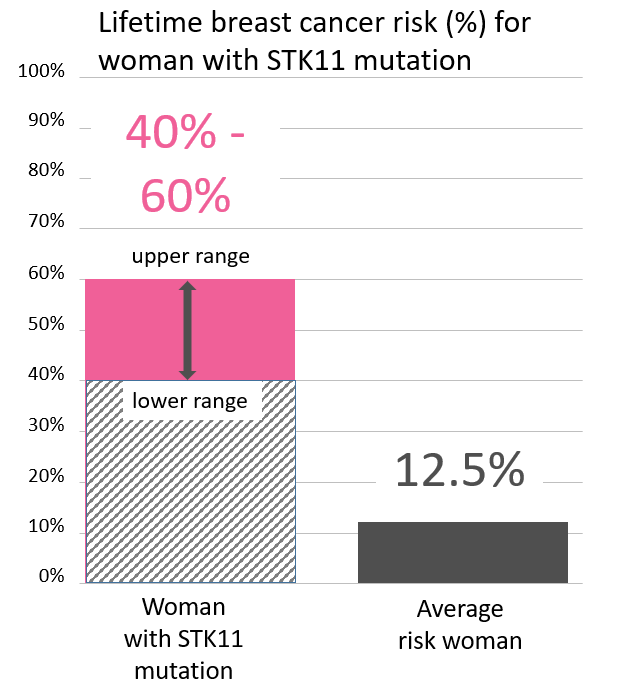 Graph of lifetime risk for breast cancer in women with an <abbr                 data-toggle='tooltip'                 class='glossary-tip tt-stk11'                 title='<p>STK11 is a gene found on chromosome 19.&nbsp;Mutations in STK11 are associated with Peutz-Jeghers syndrome, a rare disorder that leads to increased risk of noncancerous growths and increased risk of certain cancers.&nbsp;</p>  <p>People with STK11 mutations are at a greatly increased risk of:</p>  <p>breast cancer in women (up to 50% lifetime risk)<br /> colon cancer (up to 39% lifetime risk)<br /> pancreatic cancer (up to 36% lifetime risk)<br /> stomach cancer (up to 29% lifetime risk)<br /> ovarian cancer (up to 21% lifetime risk)<br /> lung cancer (up to 17% lifetime risk)<br /> small intestine cancer (up to 13% lifetime risk)<br /> cervical cancer (up to 10% lifetime risk)<br /> uterine cancer (up to 9% lifetime risk)</p>  <p>See also Peutz-Jeghers Syndrome&nbsp;</p> '             >STK11</abbr> mutation