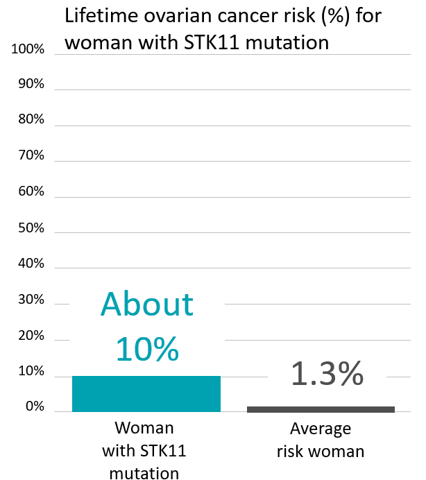 Graph of lifetime ovarian cancer risk in women with an <abbr                 data-toggle='tooltip'                 class='glossary-tip tt-stk11'                 title='<p>STK11 is a gene found on chromosome 19.&nbsp;Mutations in STK11 are associated with Peutz-Jeghers syndrome, a rare disorder that leads to increased risk of noncancerous growths and increased risk of certain cancers.&nbsp;</p>  <p>People with STK11 mutations are at a greatly increased risk of:</p>  <p>breast cancer in women (up to 50% lifetime risk)<br /> colon cancer (up to 39% lifetime risk)<br /> pancreatic cancer (up to 36% lifetime risk)<br /> stomach cancer (up to 29% lifetime risk)<br /> ovarian cancer (up to 21% lifetime risk)<br /> lung cancer (up to 17% lifetime risk)<br /> small intestine cancer (up to 13% lifetime risk)<br /> cervical cancer (up to 10% lifetime risk)<br /> uterine cancer (up to 9% lifetime risk)</p>  <p>See also Peutz-Jeghers Syndrome&nbsp;</p> '             >STK11</abbr> mutation